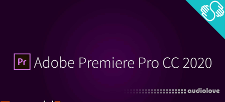SkillShare Adobe Premiere Pro 2020 Master Class Video Editing
