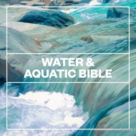 Blastwave FX Water and Aquatic Bible WAV