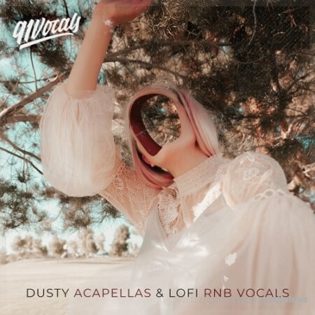 91Vocals Dusty Acapellas And Lo-Fi Rnb Vocals WAV