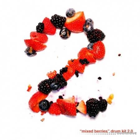 Mike Hector Mixed Berries Vol.2 Drum Kit
