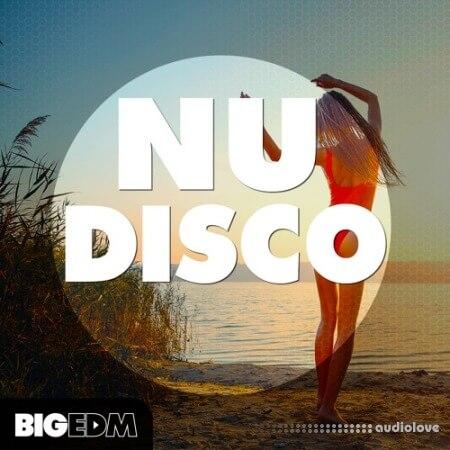 Big EDM Nu Disco WAV MiDi Synth Presets