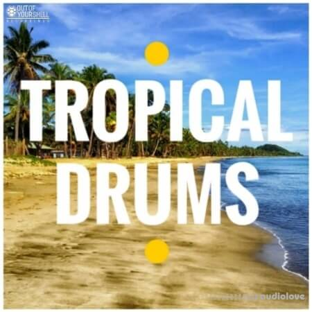 Out Of Your Shell Tropical Drums WAV MiDi
