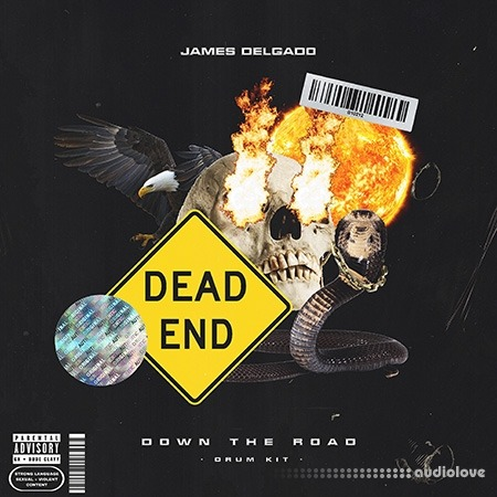 James Delgado Down The Road (Drum And Loop Kit)