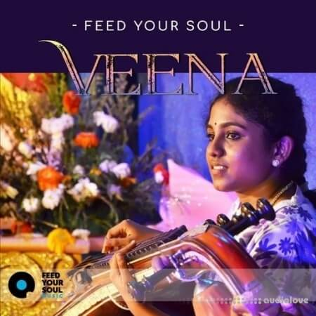 Feed Your Soul Music Feed Your Soul Veena