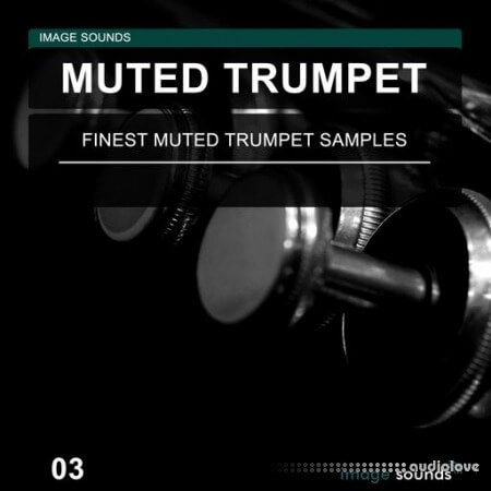 Image Sounds Muted Trumpet 03