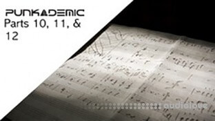 PUNKADEMIC Music Theory Comprehensive Complete Part 10, 11, & 12
