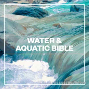 Blastwave FX Water and Aquatic Bible