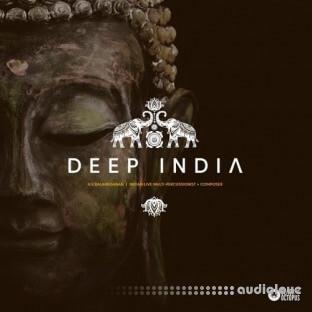 Black Octopus Sound Deep India