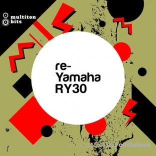 Multiton Beats re-Yamaha RY30