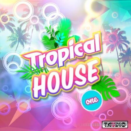Taudio Tropical House Vol.1 WAV