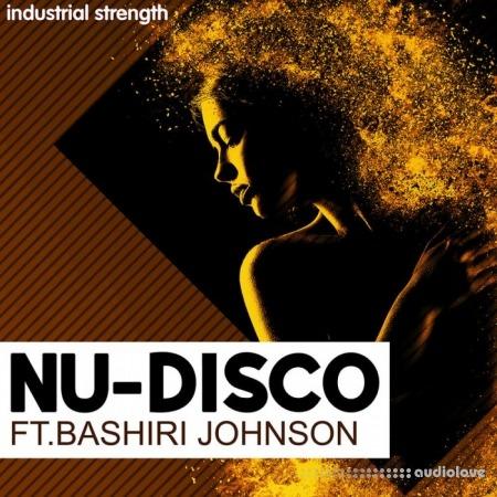 Industrial Strength Nu-Disco Ft. Bashiri Johnson