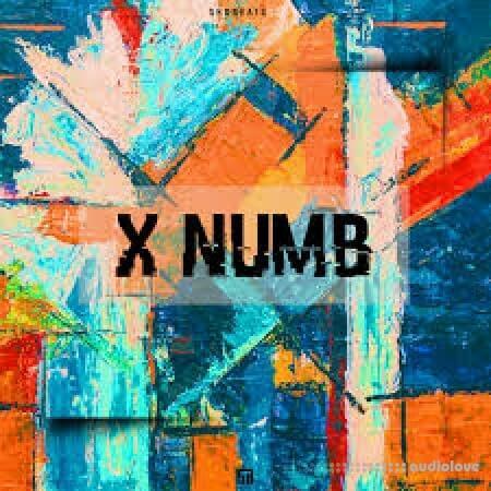 Shobeats X Numb WAV MiDi Synth Presets