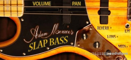 Adam Monroe Music Slap Bass
