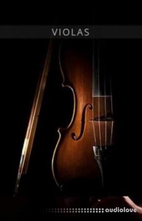 Auddict United Strings of Europe: Violas KONTAKT