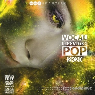 Audentity Records Vocal Reggaeton Pop 2K20