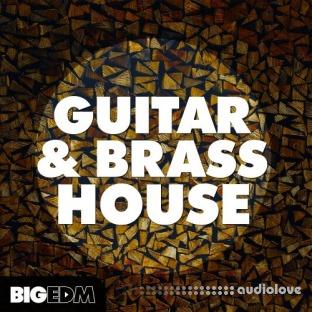 Big EDM Guitar And Brass House