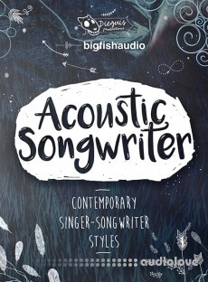 Dieguis Productions Acoustic Songwriter