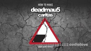 Sonic Academy Deadmau5 Caritas Remix with Dom Kane