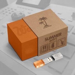 Johnny Juliano Summer Wave Sample Pack