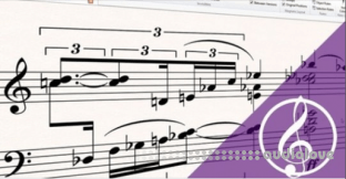 Udemy Take your Sibelius skills to the next level Course 1