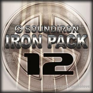 Soundiron Iron Pack 12 Prepared Acoustic Guitar