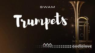 Audio Modeling SWAM Trumpets