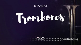 Audio Modeling SWAM Trombones