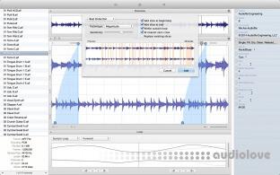 Audiofile Engineering Loop Editor