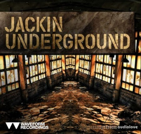 Waveform Recordings Jackin Underground WAV