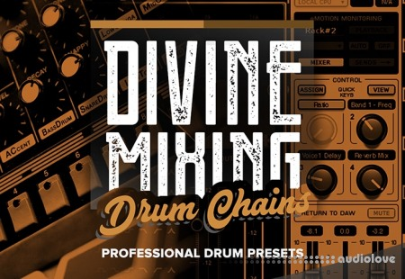 Sean Divine Divine Mixing Drum Chains v1.25 Synth Presets