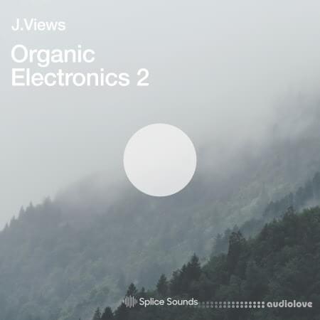 Splice Sounds Organic Electronics 2 by J Views WAV