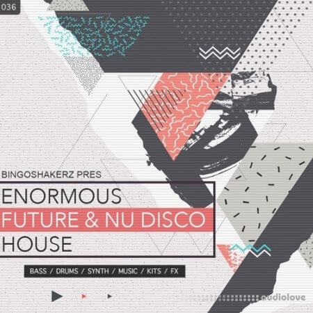 Bingoshakerz Enormous Future And Nu Disco House WAV