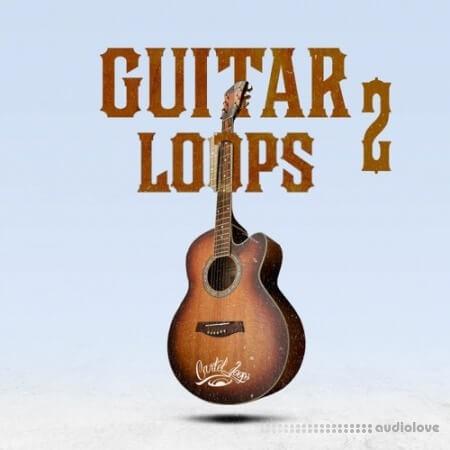 Cartel Loops Guitar Loops Vol.2