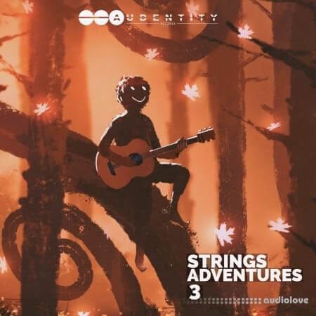 Audentity Records Strings Adventures Vol.3