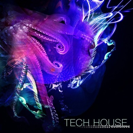 SPF Samplers Tech House Samples WAV