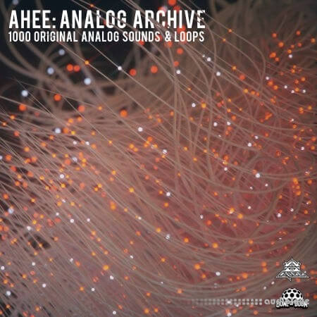 Splice Sounds Ahee Analog Archive