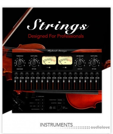 Muze Hybrid Strings