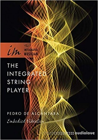 The Integrated String Player : Embodied Vibration