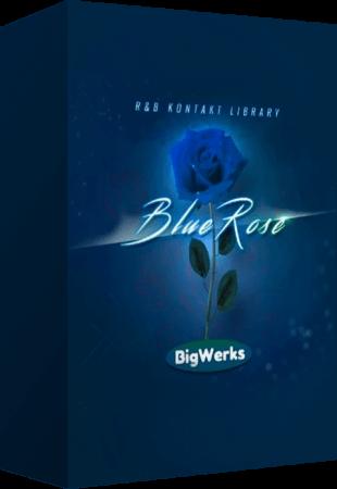 BigWerks Blue Rose