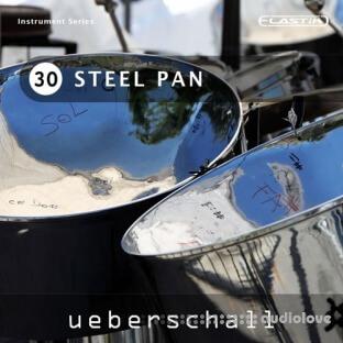 Ueberschall Steel Pan