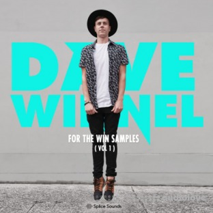 Splice Sounds Dave Winnel For The Win Samples Vol.1