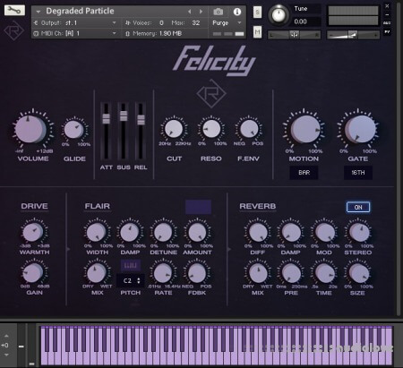 Rigid Audio Felicity v1.0 KONTAKT