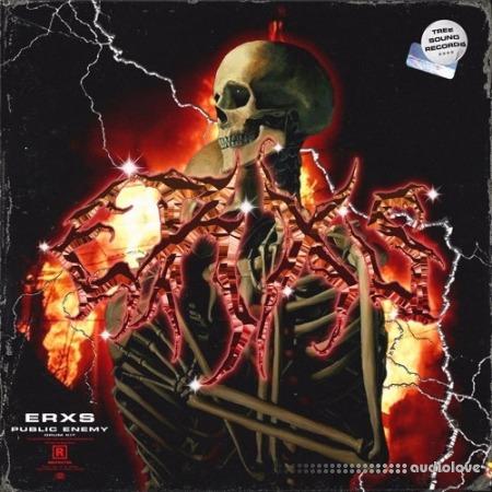 Erxs Public Enemy Drum Kit WAV MiDi