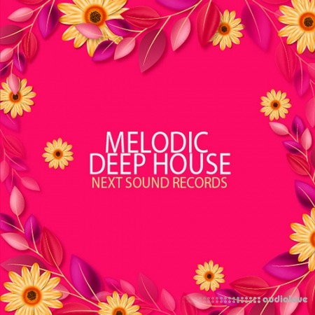 Next Sound Records Melodic Deep House WAV MiDi Synth Presets