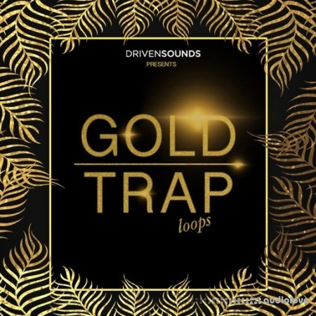 DRIVENSOUNDS Gold Trap Loops WAV