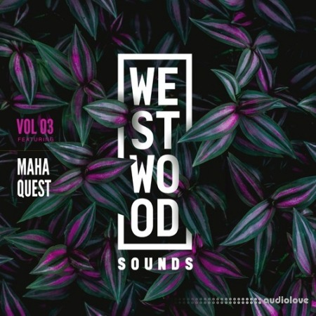 Black Octopus Sound Westwood Sounds Vol.3 Maha Quest WAV Synth Presets