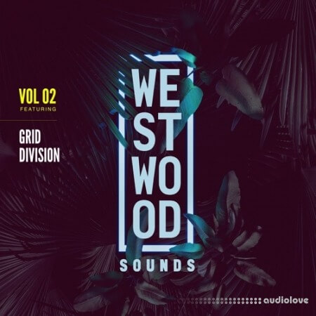 Black Octopus Sound Westwood Sounds Vol.2 Grid Division WAV Synth Presets