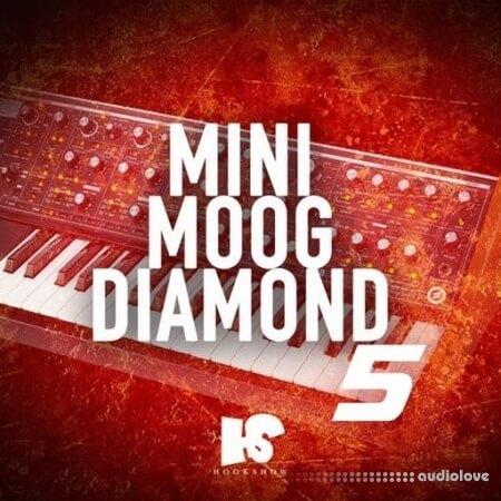 HOOKSHOW Mini Moog Diamond 5 WAV
