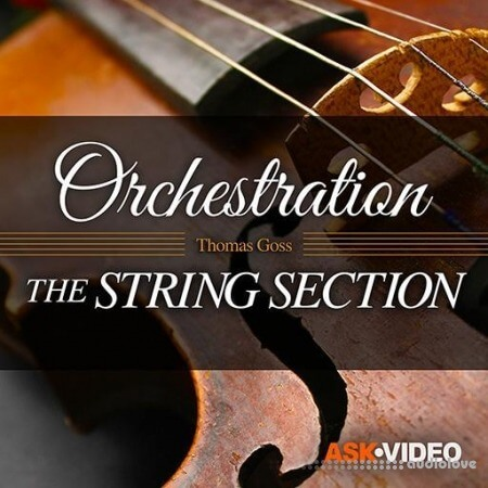 Ask Video Orchestration 101 The String Section TUTORiAL