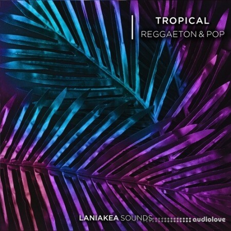 Laniakea Sounds Tropical Reggaeton And Pop WAV